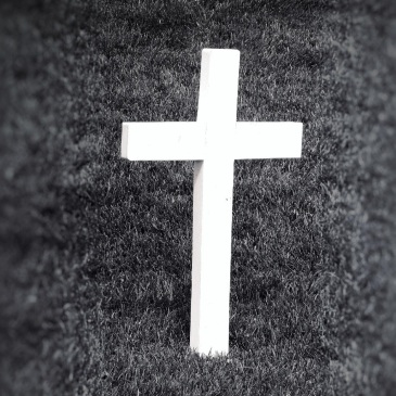 Single Cross