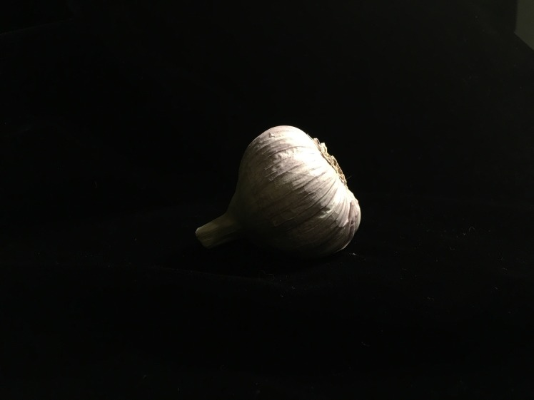 Traditional White Garlic