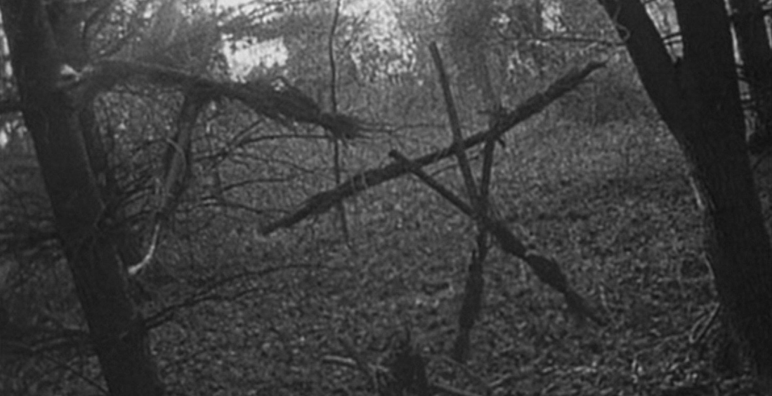 Blair Witch — 2016